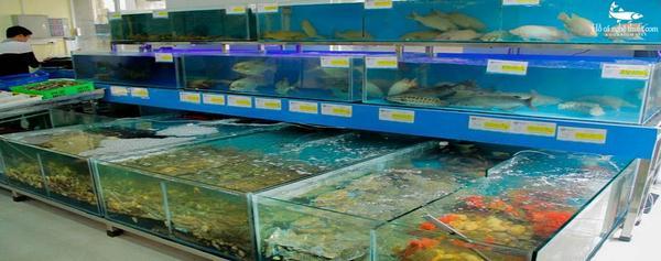 Hồ hải sản giúp giữ độ tươi sống của hải sản trong thời gian dài