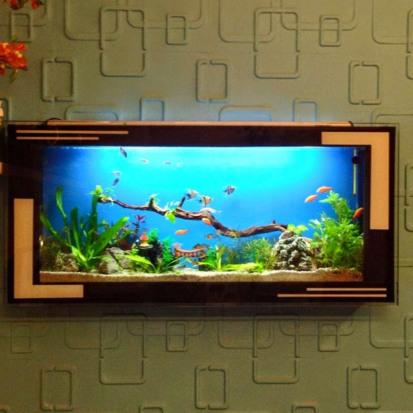 Hồ treo tường thích hợp để lắp đặt tại phòng khách