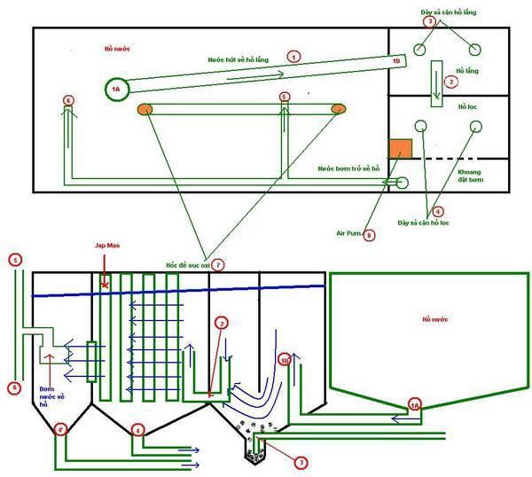 Thiết kế hệ thống lọc hồ cá cần đảm bảo nguyên tắc trên